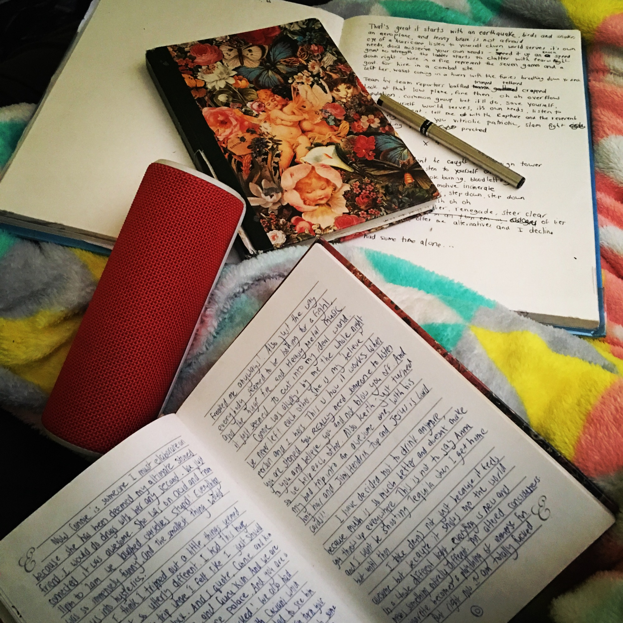 a collection of teenage journals